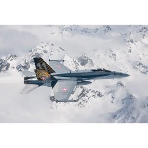 Kit de construit avion F/A-18 HORNET TIGER MEET 2016, 1:72