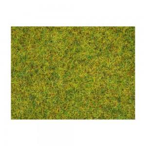 Iarba de vara, 2.5 mm