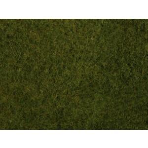 Frunziș de iarbă sălbatică (Foliaj)