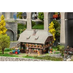 Casa din Pădurea Neagră