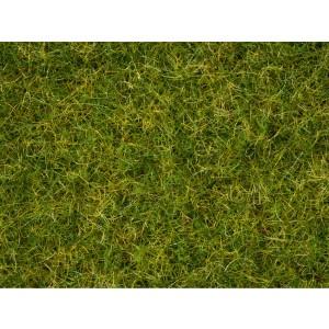 Iarba Vara 2,5 - 6 mm